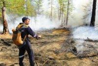 Власти Тувы ввели жесткие ограничения на посещение лесных массивов
