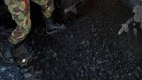 В Туве уничтожено 100 кг наркотиков
