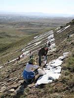 На горе Догээ в предместье Кызыла выкладывается мантра. Фото Юлии Жиронкиной