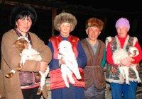 Тува вводит льготы для животноводов-тысячников