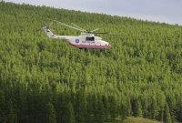 В Туве на треть сократили количество лесных пожаров в 2010 году