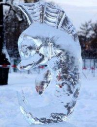 Ледовые скульптуры, каток, лыжня : Национальный парк Тувы открывает зимний сезон