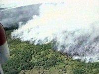 Власти Тувы мобилизуют ресурсы на борьбу с пожарами