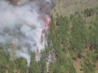 В Туве борются с двумя крупными лесными пожарами