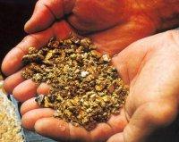 В Туве артель старателей «Ойна» перевыполняет план по золоту