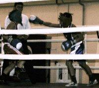 84 школьника участвуют в Первенстве Тувы по боксу