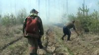 В Туве ликвидирован последний лесной пожар
