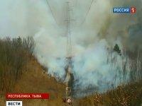 В отношении чабана, по халатности которого возник лесной пожар, возбуждено уголовное дело