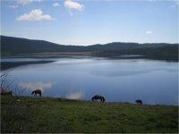 Туристическая Тува. Молочное озеро - Сут-Холь