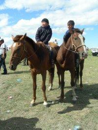 В Туве готовится трасса для главных конных скачек года