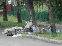 Полиция Тувы подключилась к борьбе за чистоту улиц