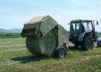 В Туве лидерами в заготовке кормов выступают хозяйства Тоджинского и Тере-Хольского районов