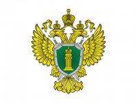 Прокуратура признала возбуждение уголовного дела по факту ДТП на Тодже законным