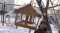 Тува: морозы крепчают - наполните кормушки для птиц