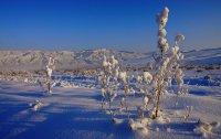 Андрей Максимов: Новый год - это повод подумать про жизнь