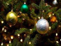 Среди колоний Тувы объявлен конкурс на лучшую новогоднюю елку