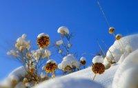 В Туве объем выпавшего нынешней зимой снега в полтора раза превысил среднегодовой