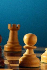 Студентка из Тувы Саяна Чылбак-оол - лучшая по шахматам среди сельхозвузов ЦФО
