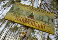 В пяти муниципалитетах Тувы введен особый противопожарный режим