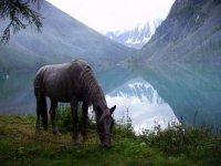 Рейтинг глав Сибирского федерального округа по развитию туризма