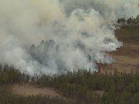 В Туве участковый установил лесных поджигателей