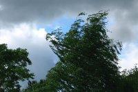 В Туве прерванное из-за шквалистого ветра электроснабжение восстановлено