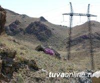 МЭС Сибири усиливают контроль работы над энергообъектами в Тыве в связи с осложнением лесопожарной обстановки