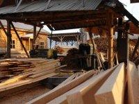 В Туве разработан закон против нелегального оборота древесины
