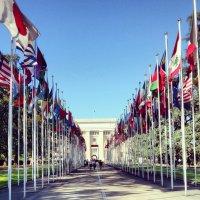 """Волонтерский проект из Тувы """"Карта мира"""" представлен в Женеве"""
