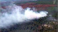 В Туве количество лесных пожаров сократилось вдвое