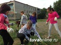 Жители Правобережного микрорайона Кызыла готовят площадку под установку спортсооружений и детского городка