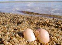 Отдых на приграничном озере Торе-Холь без разрешительных документов грозит административной ответственностью