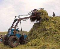 В Туве увеличились темпы заготовки кормов