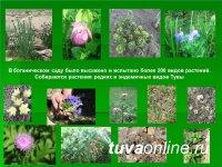 В Ботаническом саду Тувинского госуниверситета высажено и испытано более 200 видов растений