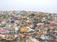 Роспотребнадзор обязал дачников убрать несанкционированные свалки и установить контейнеры