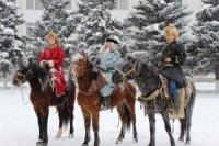Год синей деревянной Лошади наступит 31 января