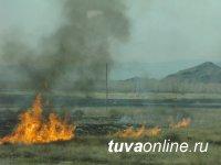 Госкомлес Тувы обращает особое внимание на недопустимость сельхозпалов