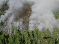 В Туве в связи с ранней весной особое внимание уделяется готовности к пожароопасному периоду