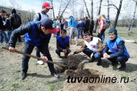 В Кызыле появилась еще одна Аллея памяти