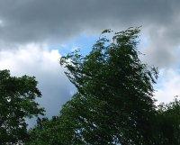 МЧС предупреждает: в Туве возможны ливни, шквалистый ветер, град