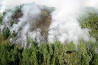 На территории Тувы действуют 10 лесных пожаров