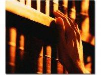 Шолбан Кара-оол создает бесплатный пункт обмена книгами