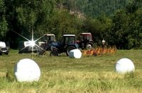 В Туве кампания по заготовке грубых кормов вышла на финишную прямую