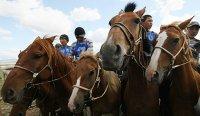 """На Наадыме в заезде 180 лошадей тувинской породы """"Кара"""" из Аксы-Барлыка завоевал для своего хозяина призовой джип"""