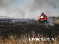 В связи с высокой пожароопасностью жителей Тувы просят воздержаться от посещения лесов