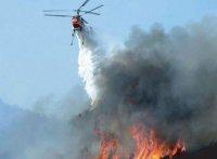 В Туве действуют 6 лесных пожаров