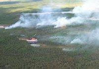 Площадь лесных пожаров в Туве сократилась на 3180 га