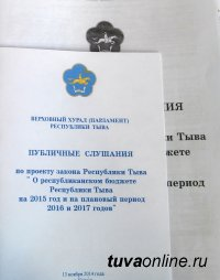 В Туве проведены публичные слушания по проекту республиканского бюджета на 2014 год