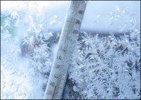 В январе 2015 года в Туве средняя месячная температура  воздуха будет выше  на 1 -1,5 градусов