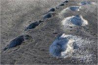 Обеспечить чистоту воздушного бассейна в Кызыле – Шолбан Кара-оол